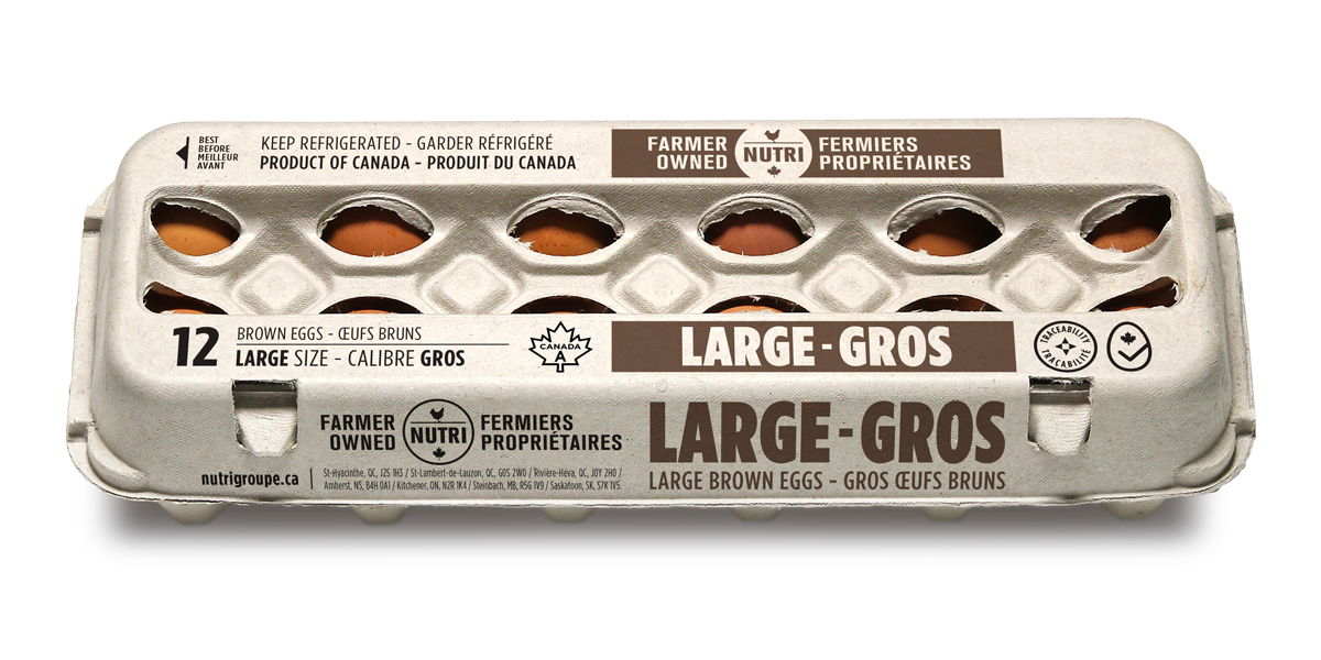 Large Brown Eggs