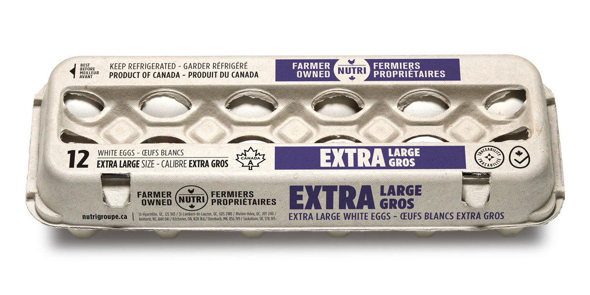 Extra Large White Eggs