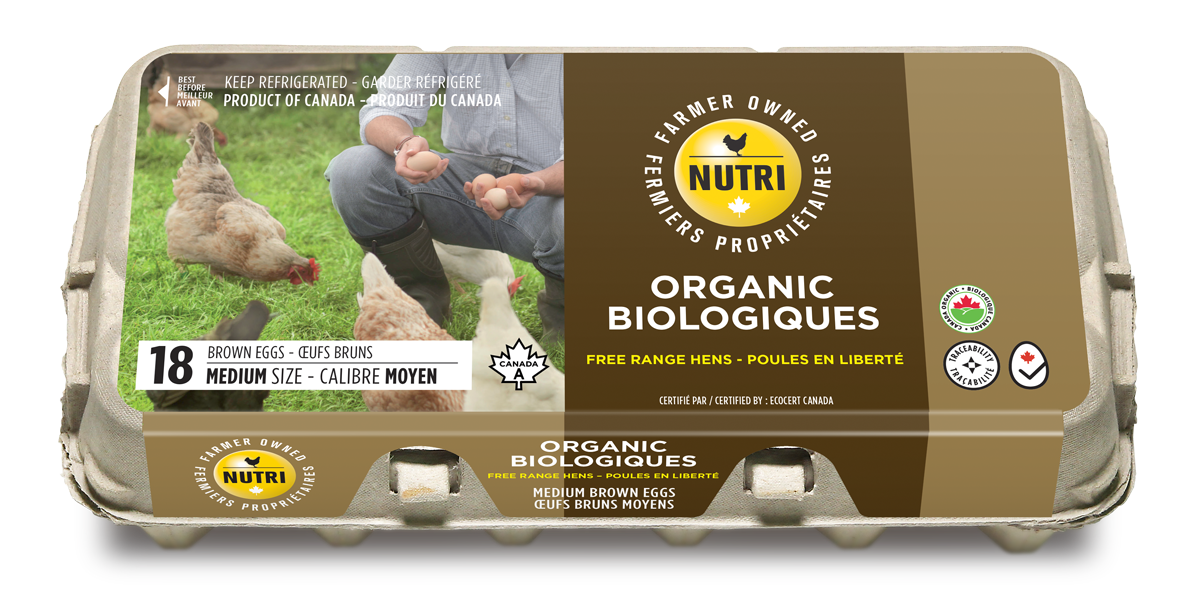 Organics Medium Brown Eggs