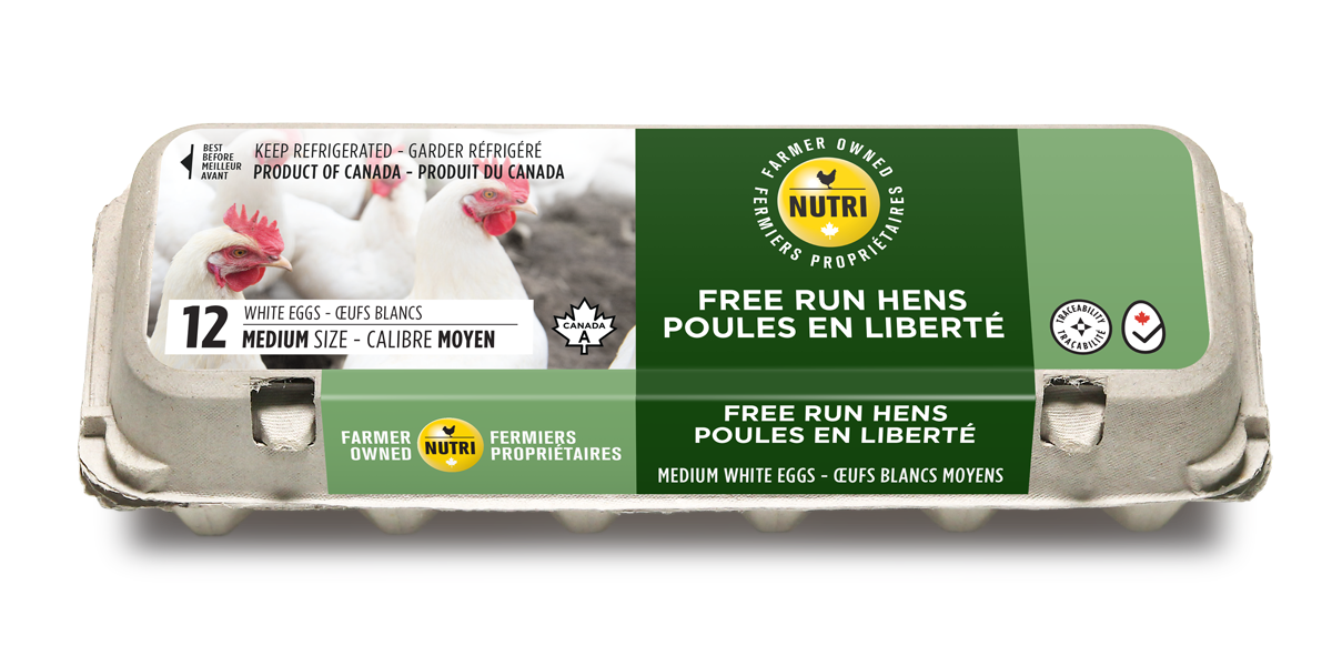 Free Run Hens Medium White Eggs