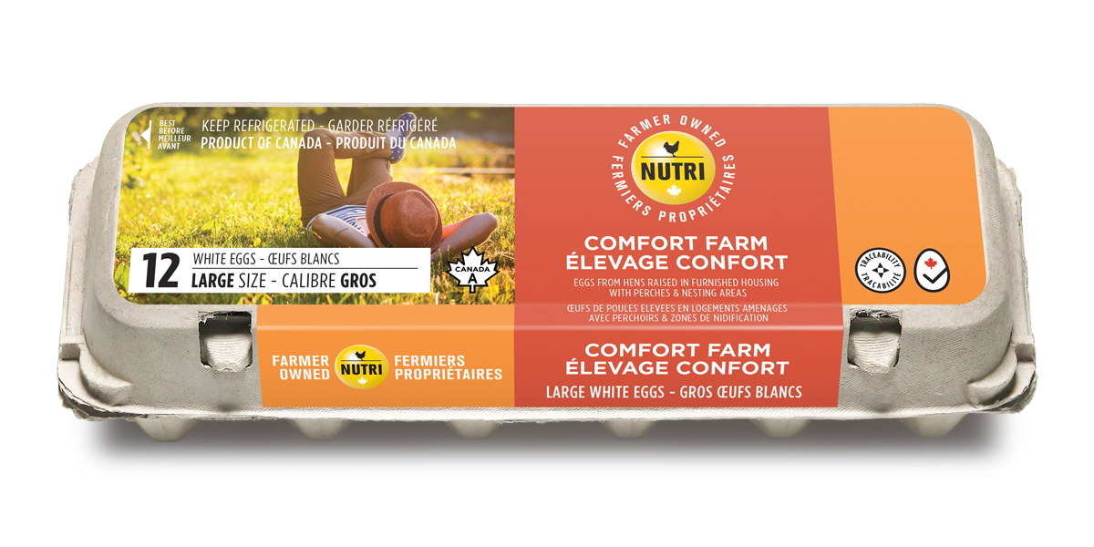 Comfort Farm Large White Eggs