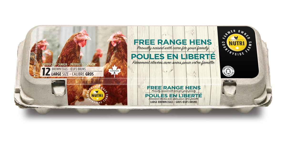Free Range Hens Large White Eggs