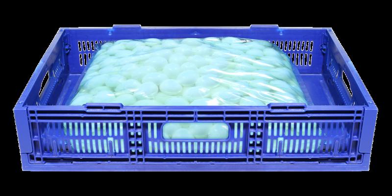 VIT-tray-plastique-oeuf-cuit-dur